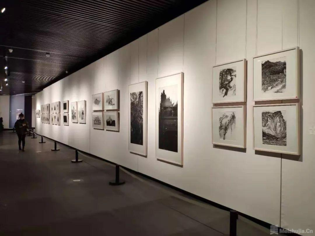 徐人杰作品展开幕式在中天美术馆举行