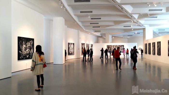 厦门青年艺术家举办个展 探索中国水墨的当代表达