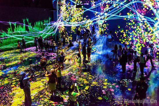 当展览变成网红 艺术展的初衷还在吗
